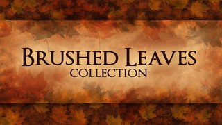 Brushed Leaves
