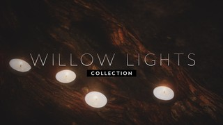 Willow Lights