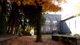 Autumn Courtyard