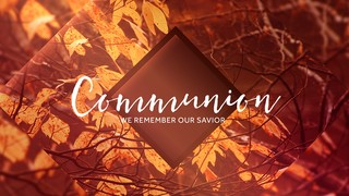 Autumn Oasis Communion