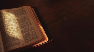 Bible Left