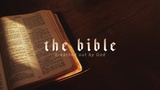 Bible Word (Stills)