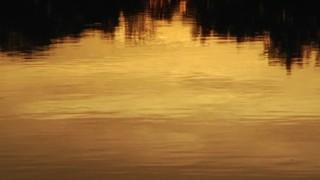 Calm Sunset Lake