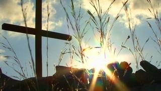 Calvary Sunshine