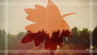 Canada Leaf Blank