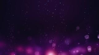 Celebration Purple