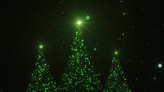 Christmas Glow Greenery