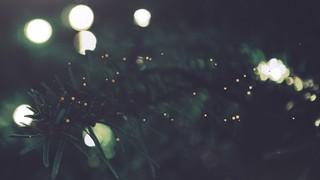 Christmas Textures Lights