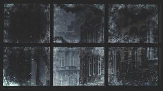 Christmas Windows 1