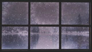 Christmas Windows 2
