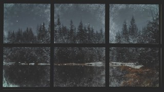 Christmas Windows 5