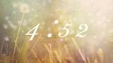 Dandelion Countdown
