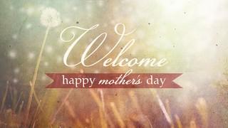 Dandelion Welcome Mom