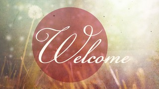 Dandelion Welcome