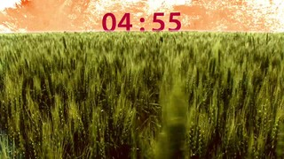 Field Countdown