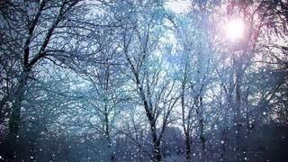 Flare Snow Fall