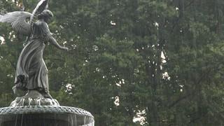 Fountain Rain