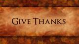 Give Thanks Leaves (Stills)
