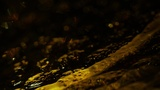 Glass Surface Amber Close (Motions)