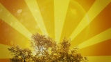 Golden Rays Tree
