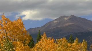 Green And Yellow Peak