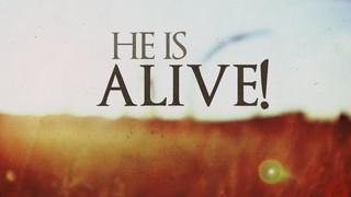 He Is Alive Field
