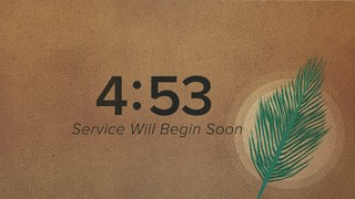 Holy Week Palm Countdown