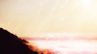 Low Horizons Fog