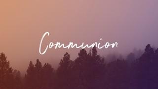 Misty Forest Communion