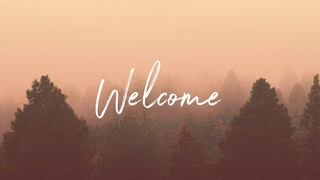Misty Forest Welcome