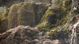 Mountain Textures Falls