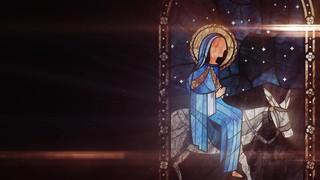 Nativity Glass Donkey
