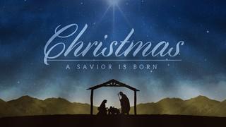 Nativity Night Christmas