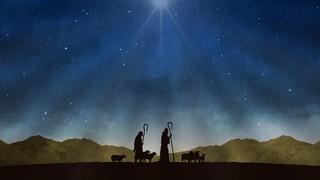 Nativity Night Shepherds