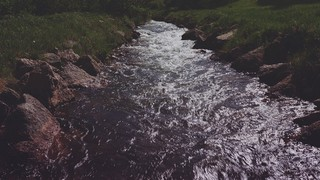 Nature Walk Stream