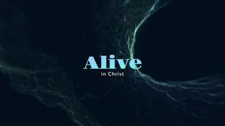Newness Alive