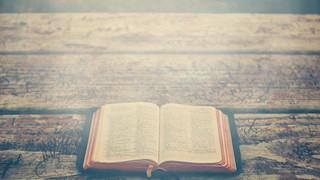 Open Bible 3