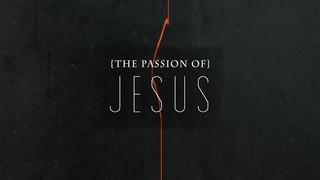 Passion Of Jesus