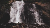 Psalm 36 Falls