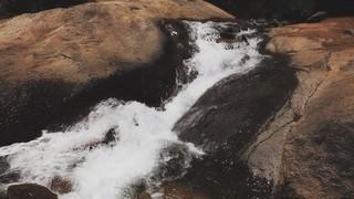 Psalm 36 Rapids