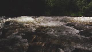 Psalm 36 River