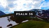 Psalm 36 (Mini Movies)
