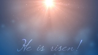 Risen Shine