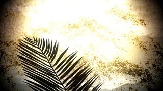 Rough Palm