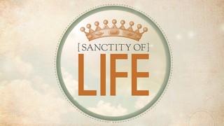 Sanctity Crown