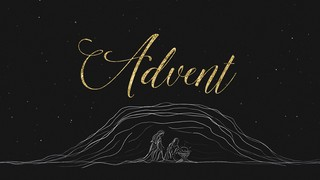 Silent Night Advent