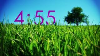 Single Tree Countdown