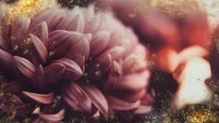 Spring Gold Pink