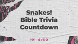 Steeples Trivia Countdown