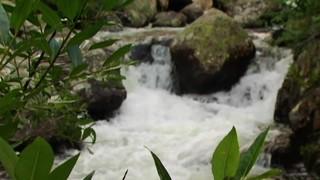Stream And Boulder
